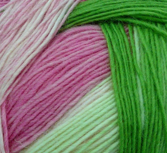 Zauberball yarn in Floral Language